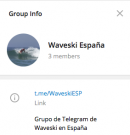 Canal de Telegram (WaveskiESP)